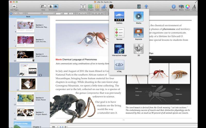Скачать iBooks Author - программа для создания цифровых учебников для iPad [Обзор / Скачать]