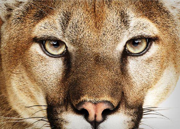 Новые особенности OS X Mountain Lion