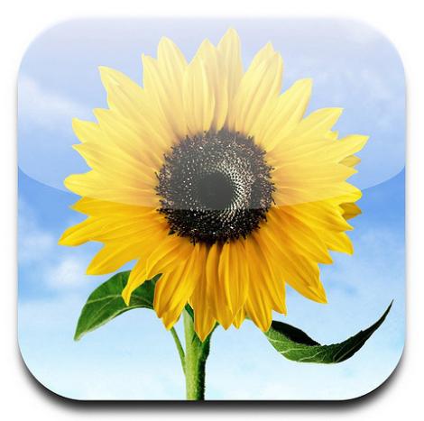 Получение скриншотов созданных на iPhone или iPad в Finder Mac OS X