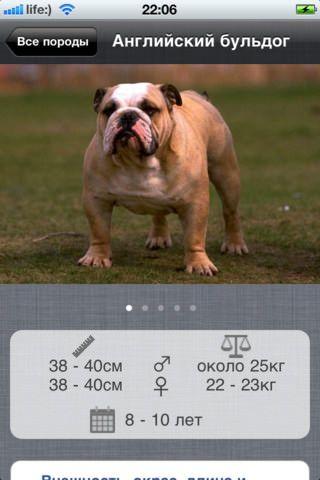 """Скачать """"Атлас пород собак"""" для iPhone и IPad"""