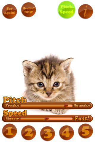 """Скачать SmackTalk! (говорящий """"хомячок"""") для iPhone, iPod и iPad [AppStore / Обзор / Скачать]"""