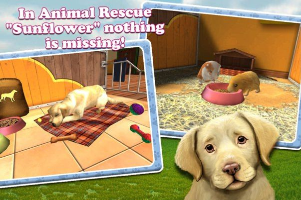 petworld-3d-my-animal-rescue2