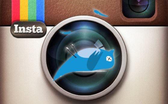 Twitter теперь не показывает фотографии Instagram