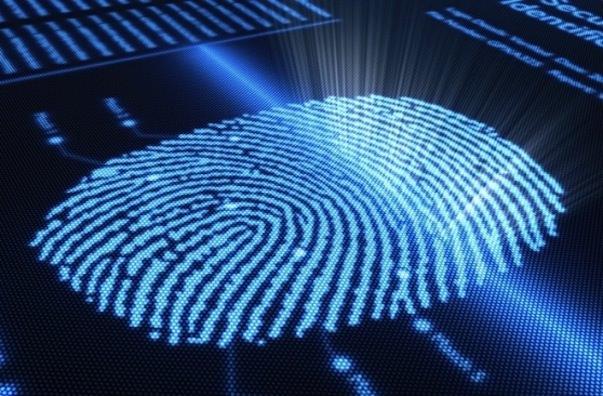iPhone 6 может быть оснащен сканером отпечатков пальцев, встроенным в кнопку Home