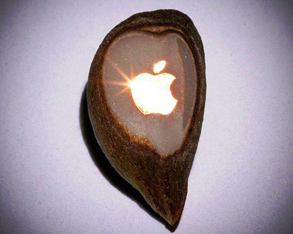 Золотой значок Apple на зернышке