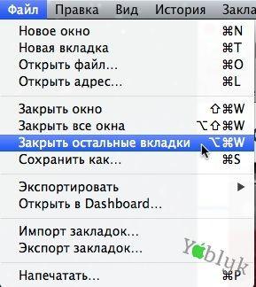 option14