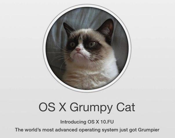 osx-grumpycat