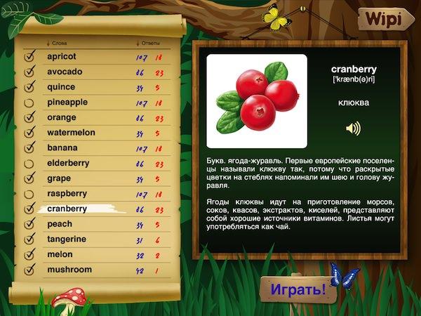iPad_wipi-english_learn