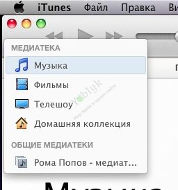 itunes_share_library2