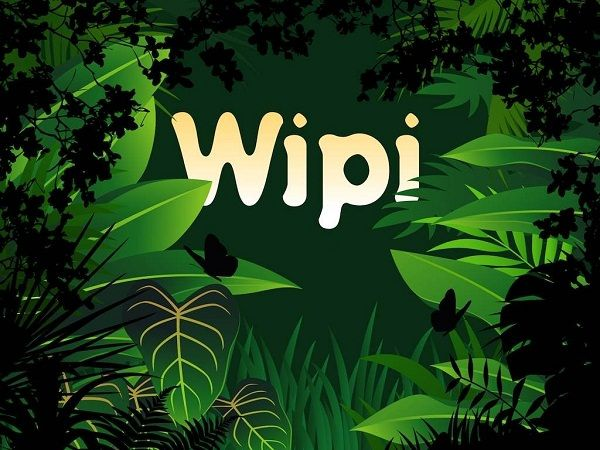 wipi-review (1)