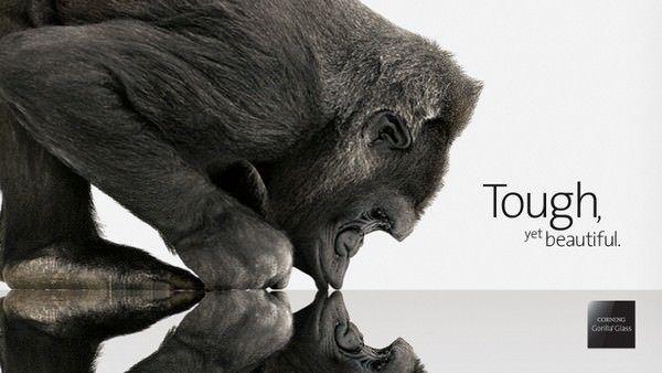 Samsung подписала контракт Gorilla Glass