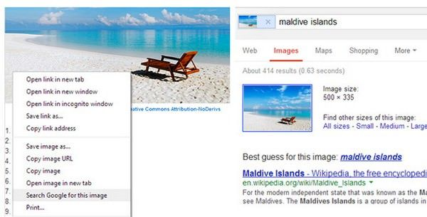 Google Chrome 30 для Windows, Mac и Linux