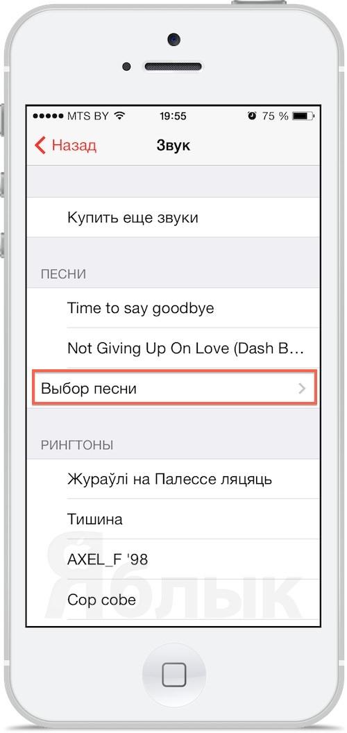 как установить песню на будильник в iPhone