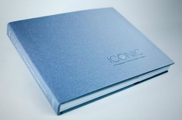 Так выглядит обложка книги.