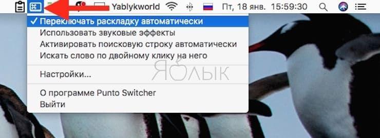 Как автоматически переключать язык (раскладку) на клавиатуре в macOS или Windows
