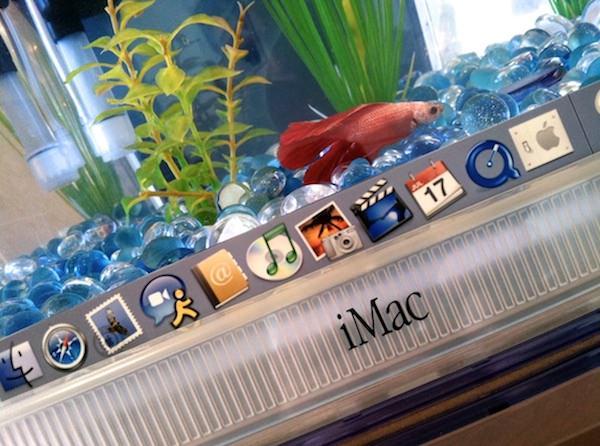Аквариум из iMac