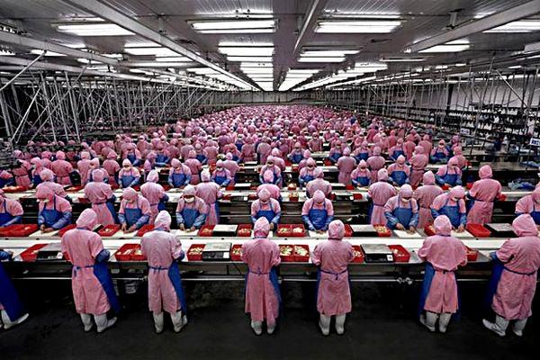 15-летний подросток погиб на фабрике по сборке iPhone