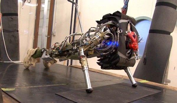 Google приобрела компанию-разработчика военных роботов