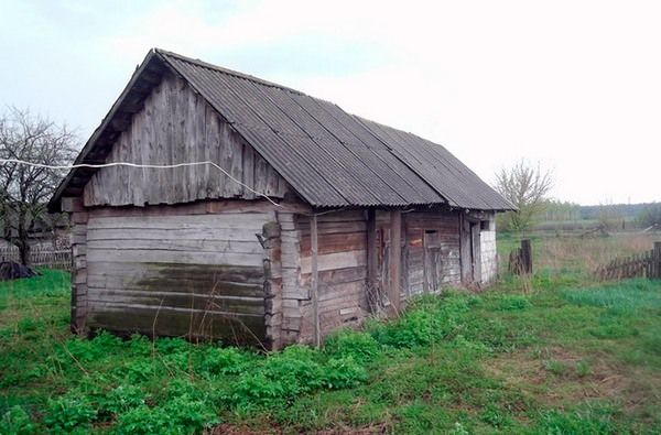 Белорус меняет дом с земельным наделом на iPhone 5s