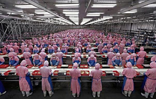 фабрика по производству iphone