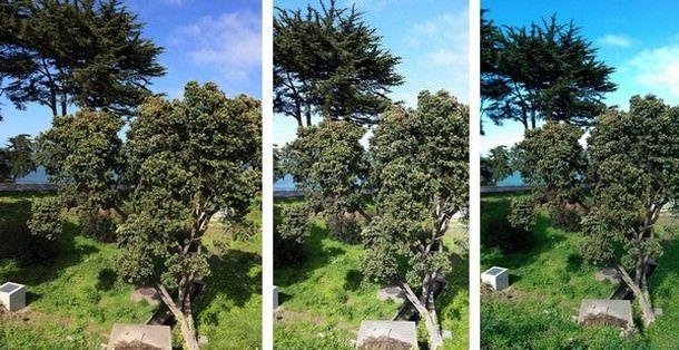 5s_m8_gs5_photo_comparison_4