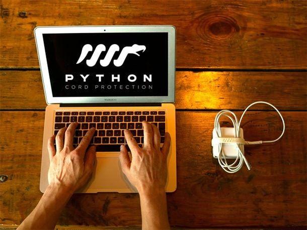 Организация проводов Python Corg