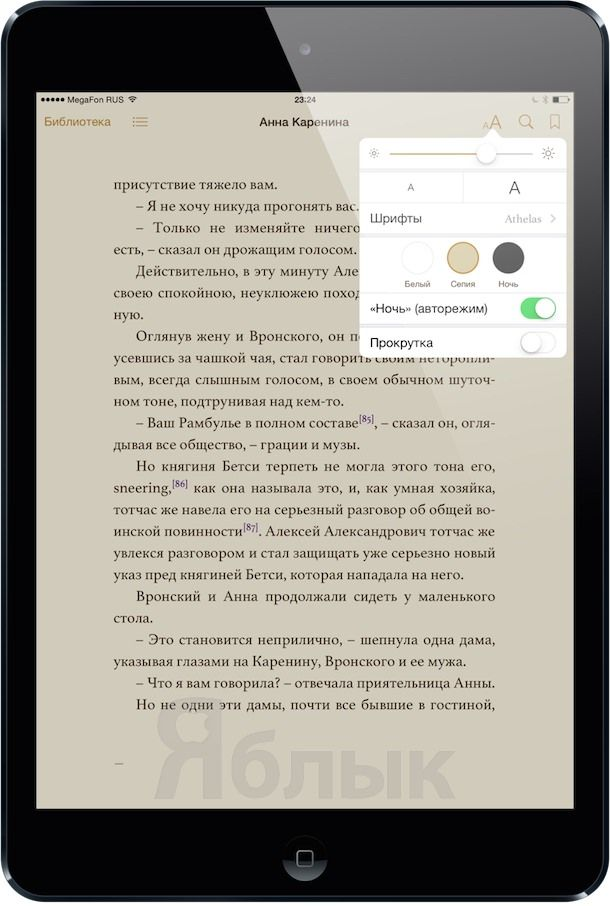 ipad_readers_5