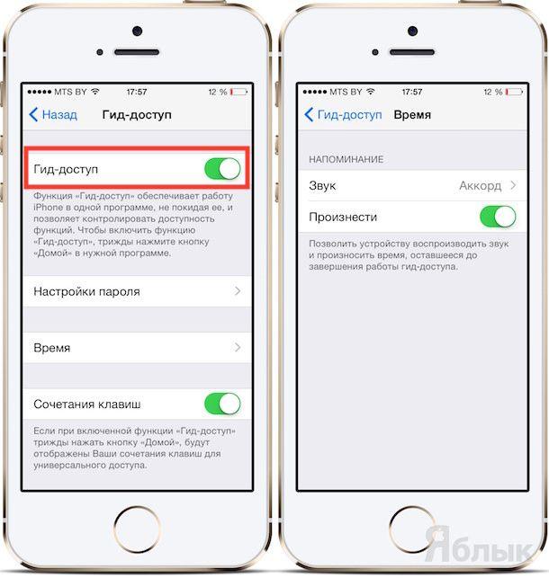 Гид-доступ в iOS 8
