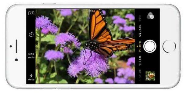 Особенности камеры в iPhone 6