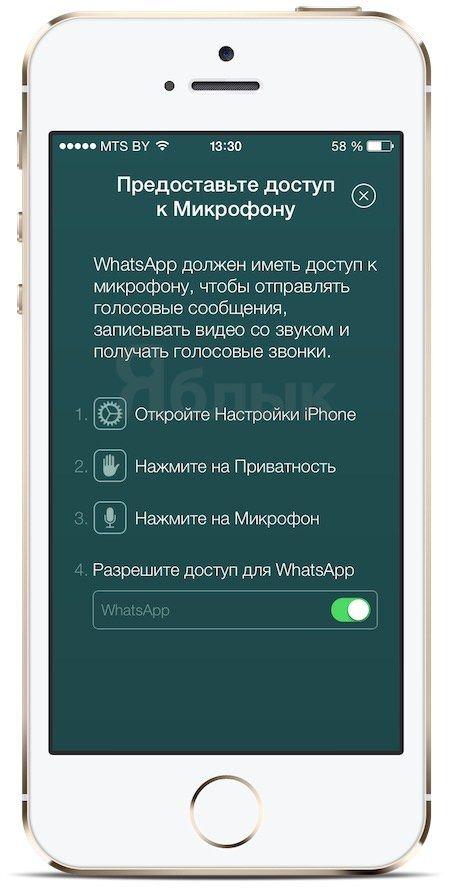звонки на WhatsApp для iPhone