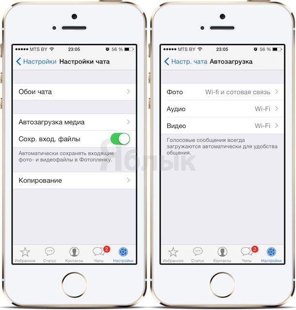 Автозагрузка медиа в whatsapp для iPhone