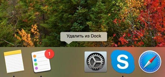 Divider for Dock-2