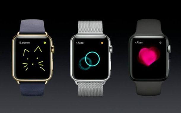 Apple Watch, раъем