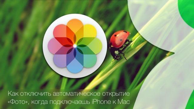 Фото для Mac