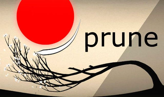 Prune, игра