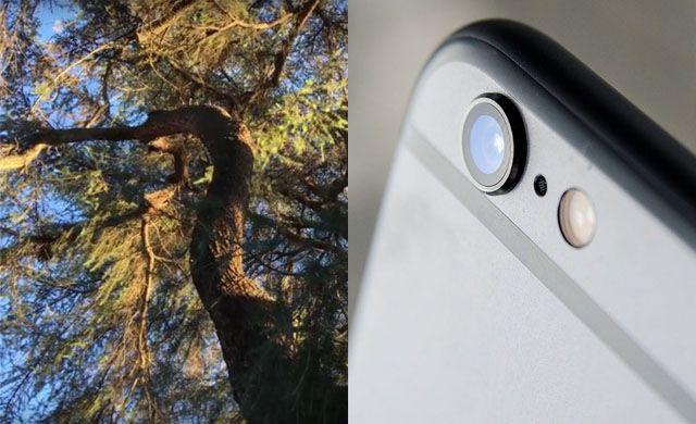 iPhone 6s, камера, видео