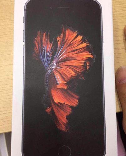 iPhone 6s, упаковка