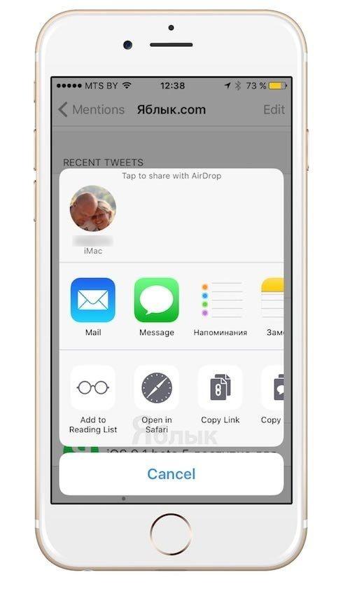 Поделиться в Tweetbot на iPhone