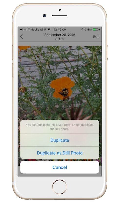 Дубликаты Живых Фото в iOS 9.3