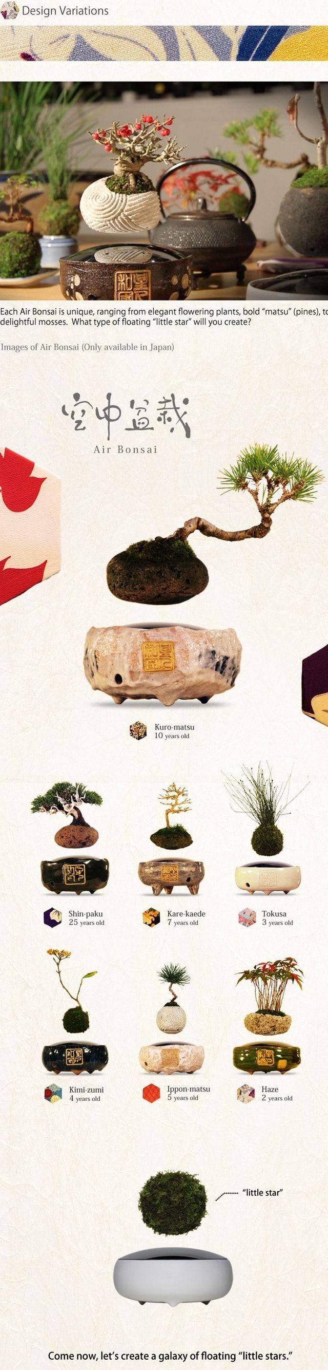 air bonsai kickstarter