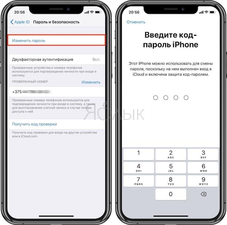 Как изменить пароль Apple ID прямо на iPhone или iPad