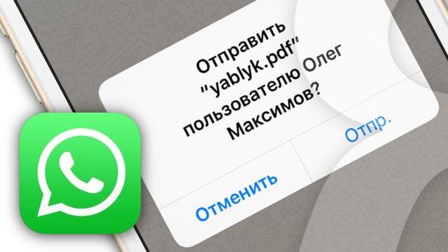 Как отправлять PDF-файлы через WhatsApp для iPhone