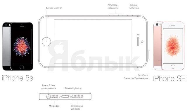 Чем отличается iPhone SE от iPhone 5s