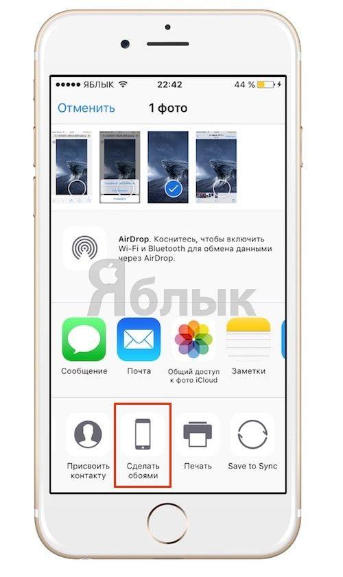 Как скачать и установить обои на iPhone, iPad и iPod touch