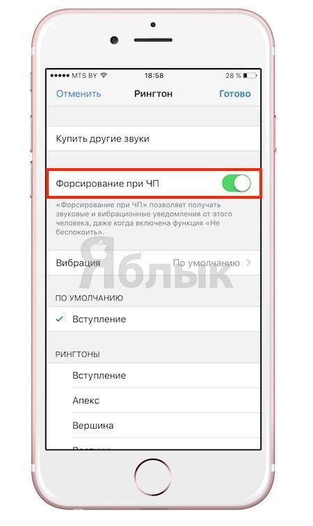 iOS 10: Обход функции «Не беспокоить» для выборочного контакта на iPhone