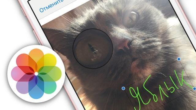 Разметка в приложении Фото на iPhone и iPad