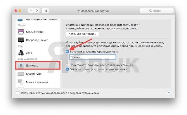 Как включить «Привет, Siri» в macOS Sierra