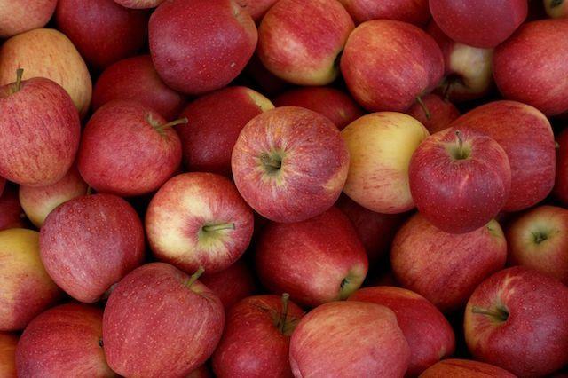 «Яблочки» Apple – забавные названия таинственных дочерних структур корпорации