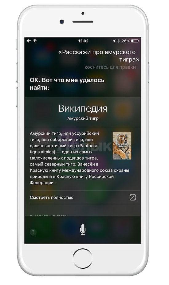 Siri и Википедия