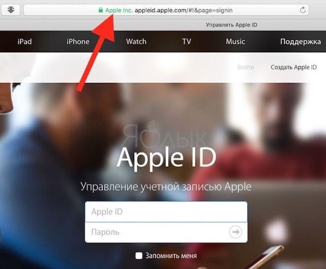 Пример ссылки на сайт Apple